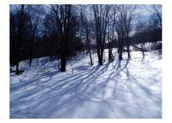 Vermont Winter I